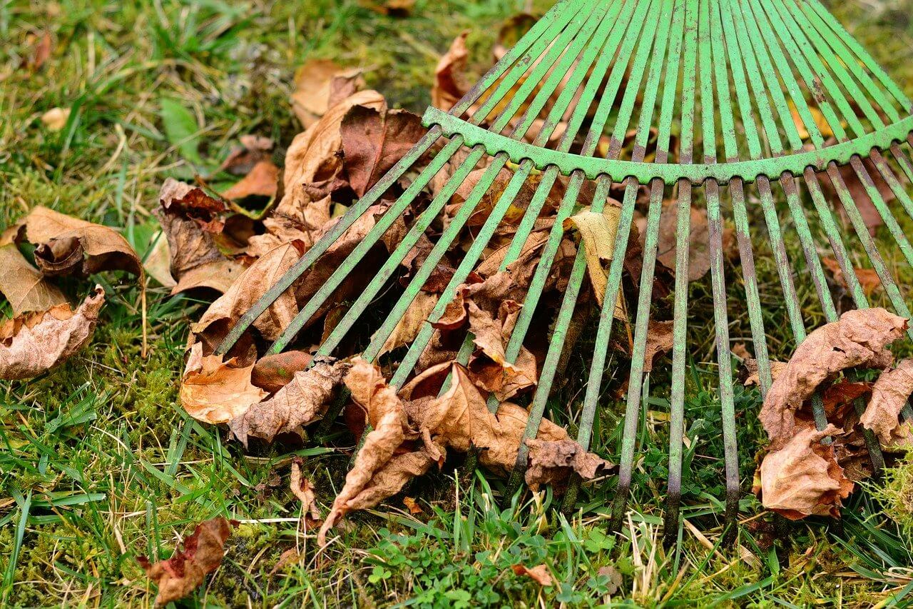 7 Tips for Landscaping in the Fall